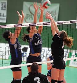Voleibol Intermedio